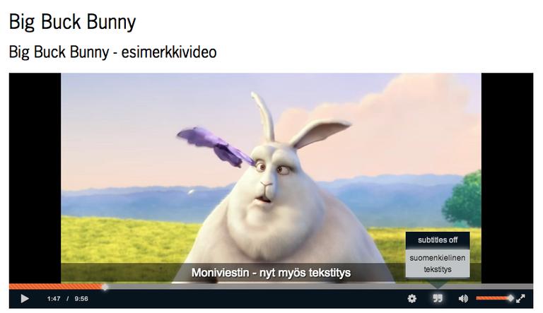 Subtitles in Moniviestin